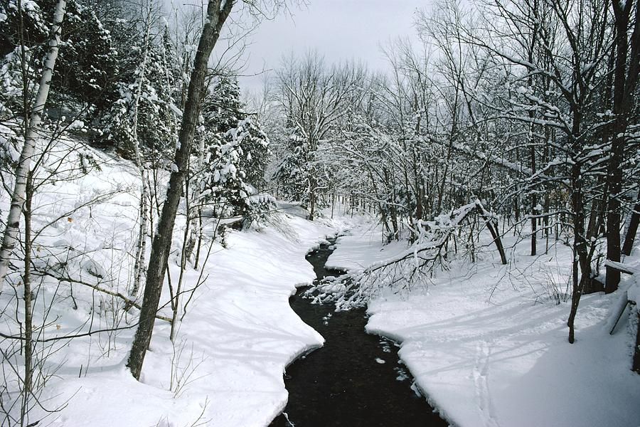 A Winter View Of Rush Brook Photograph  - A Winter View Of Rush Brook Fine Art Print