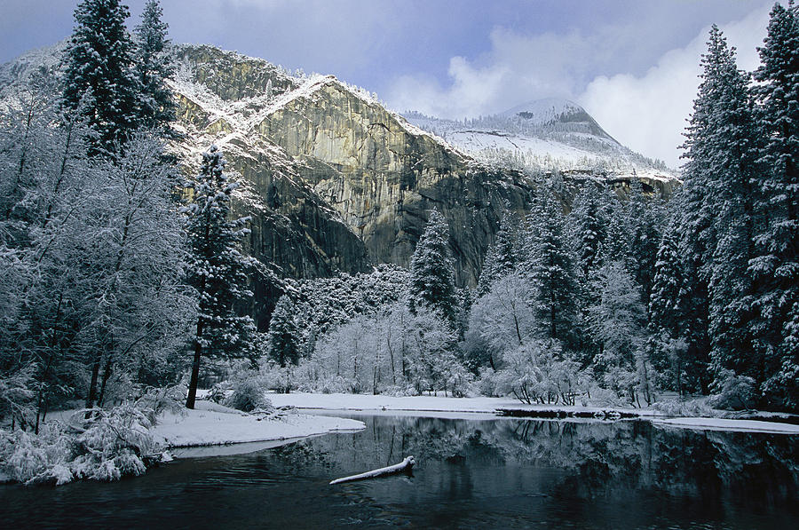 A Winter View Of The Merced River Photograph
