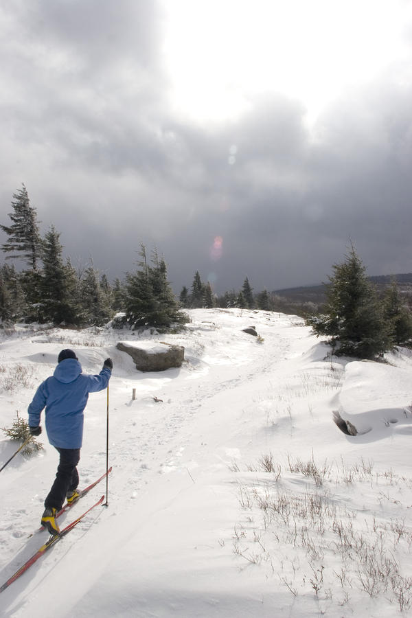 A Woman Cross Country Skiing Photograph