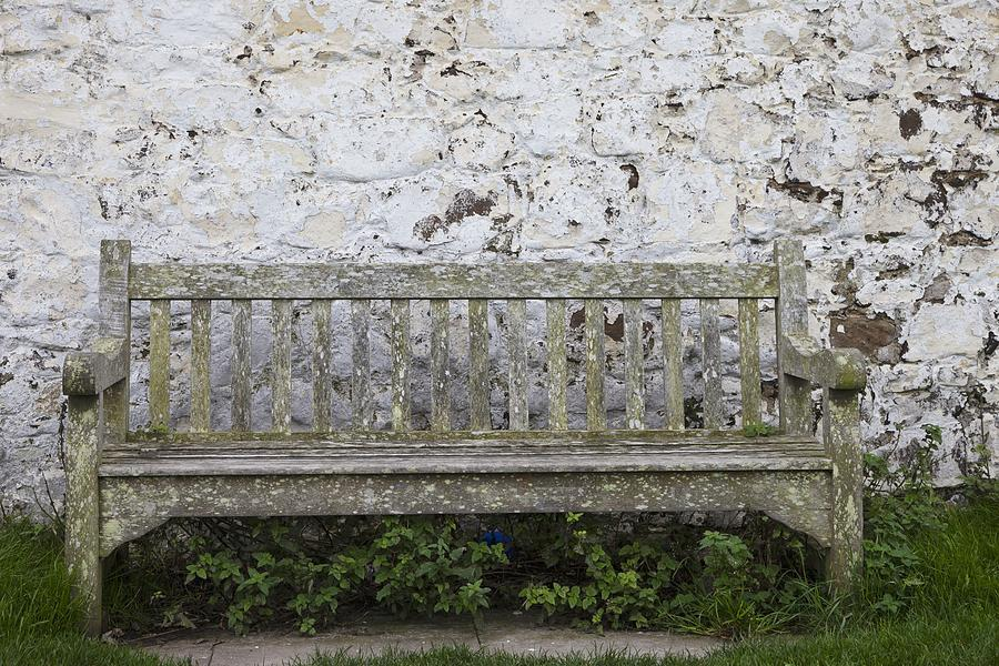 A Wooden Bench With Peeling Paint Photograph