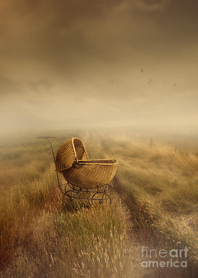 Abandoned Antique Baby Carriage In Field Photograph  - Abandoned Antique Baby Carriage In Field Fine Art Print