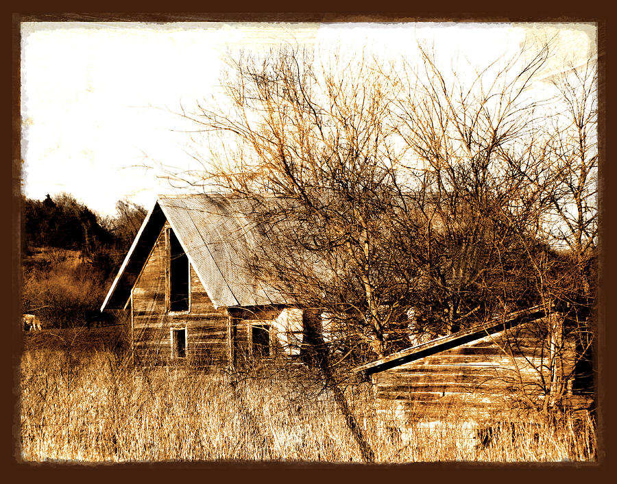 Barn Photograph - Abandoned Barn  by Ann Powell