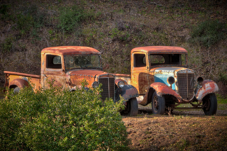 Abandoned Trucks Photograph By Connie Cooper Edwards