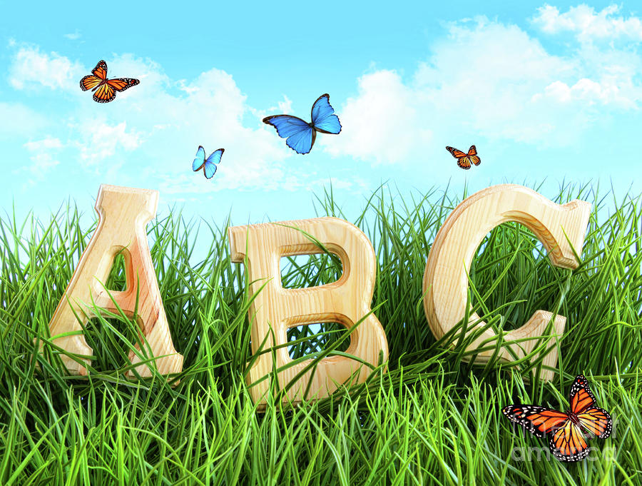 Abc Letters In The Grass Photograph  - Abc Letters In The Grass Fine Art Print