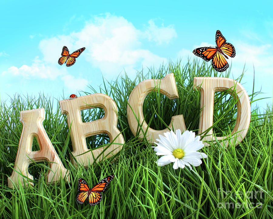 Abc Letters With Daisy In Grass Photograph