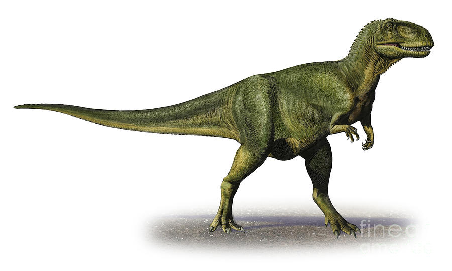 Aerosteon riocoloradensis: A Very Cool Dinosaur from Argentina ...