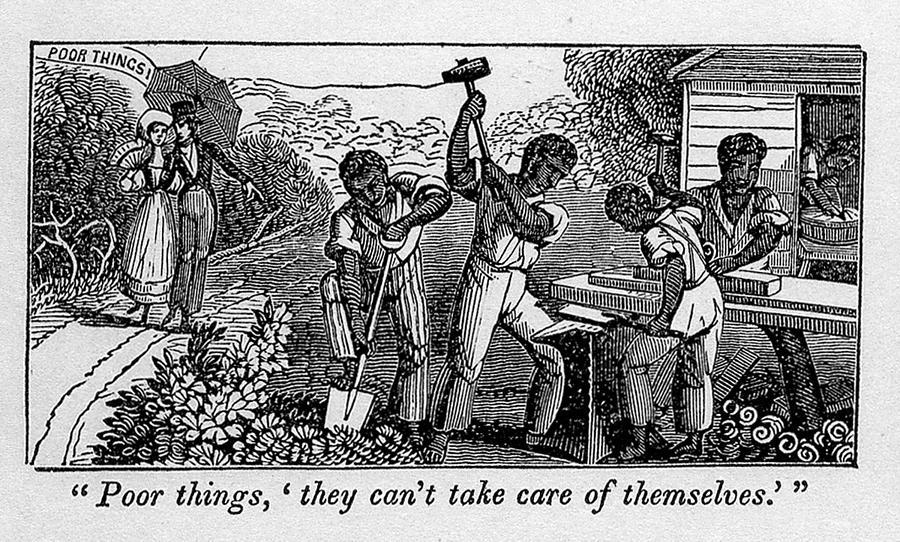 History Photograph - Abolitionist Cartoon Satirizing Slave by Everett