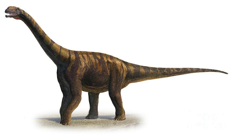 Abrosaurus Dongpoi, A Prehistoric Era Digital Art