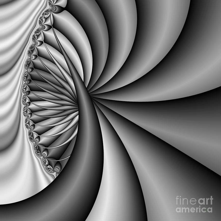 Abstract 531 Bw Digital Art  - Abstract 531 Bw Fine Art Print