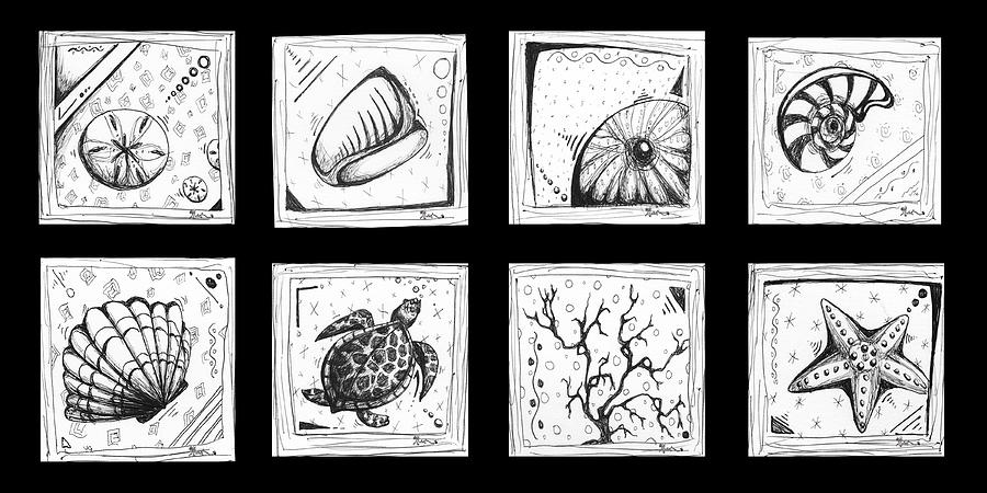 Abstract Art Contemporary Coastal Sea Shell Sketch Collection By Madart Drawing