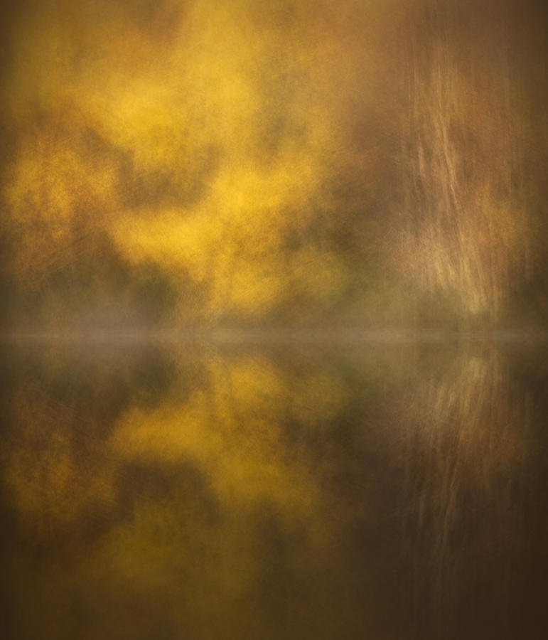 Abstract Photograph - Abstract Birch Reflections by Andy Astbury