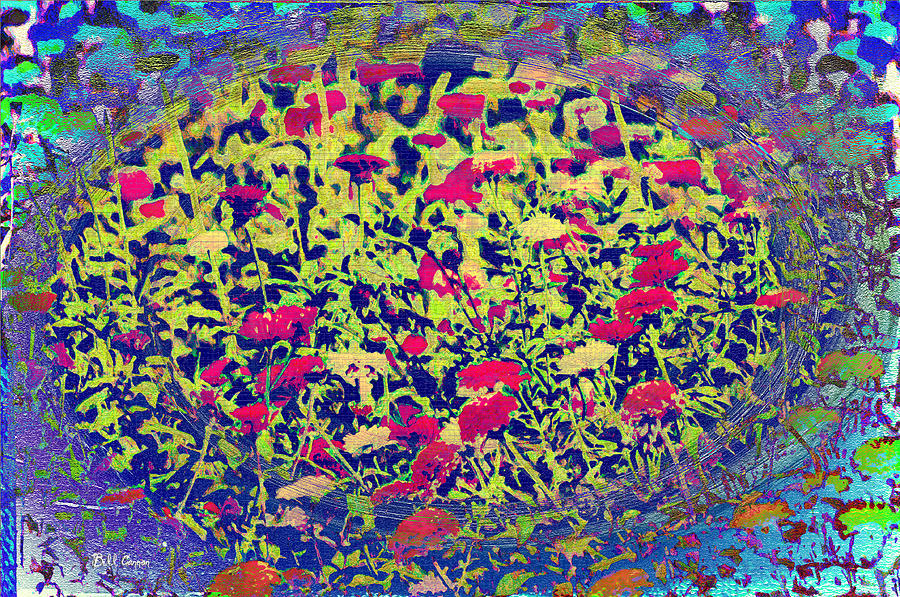 images.fineartamerica.com/images-medium-large/abstract-spring-bill-cannon.jpg