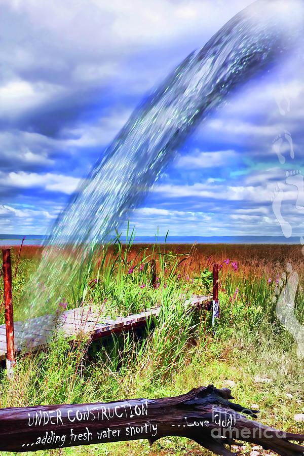 Adding Fresh Water Shortly Digital Art