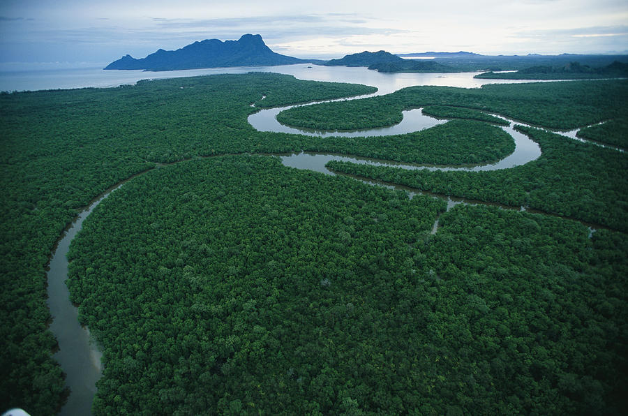 Asia Photograph - Aerial View Of The Salak River. Mount by Tim Laman