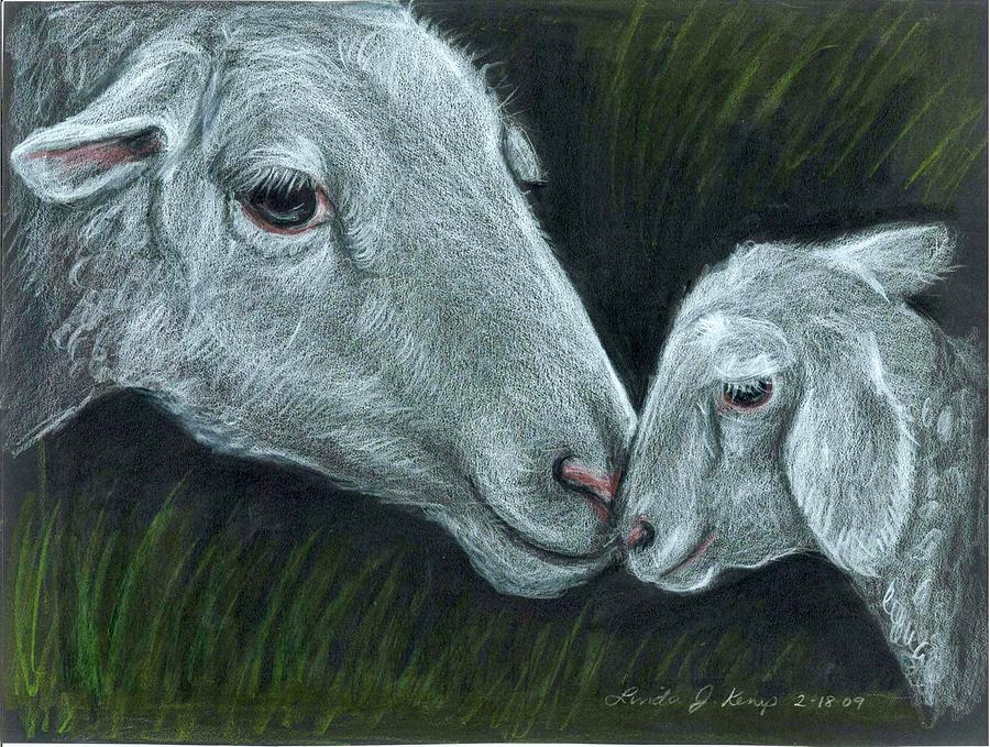 Affectionate Nuzzle Drawing  - Affectionate Nuzzle Fine Art Print