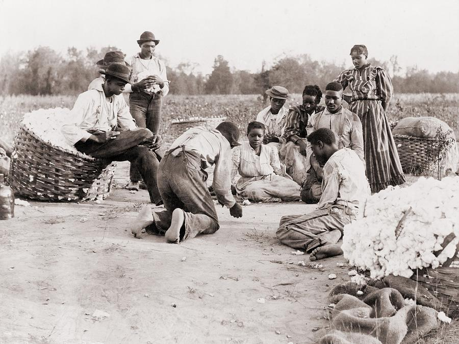 African Americans Enjoying Some Rest Photograph