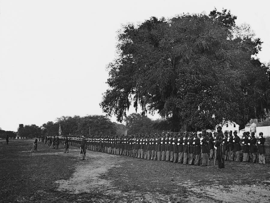 African Americans Soldiers Of The 29th Photograph  - African Americans Soldiers Of The 29th Fine Art Print