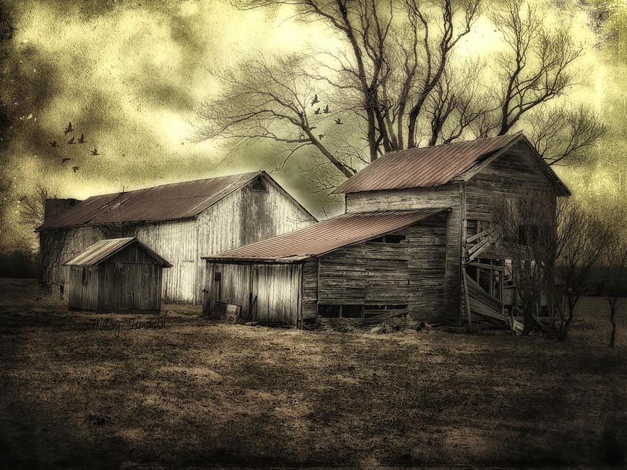 Barns Photograph - After The Storm by Mary Timman