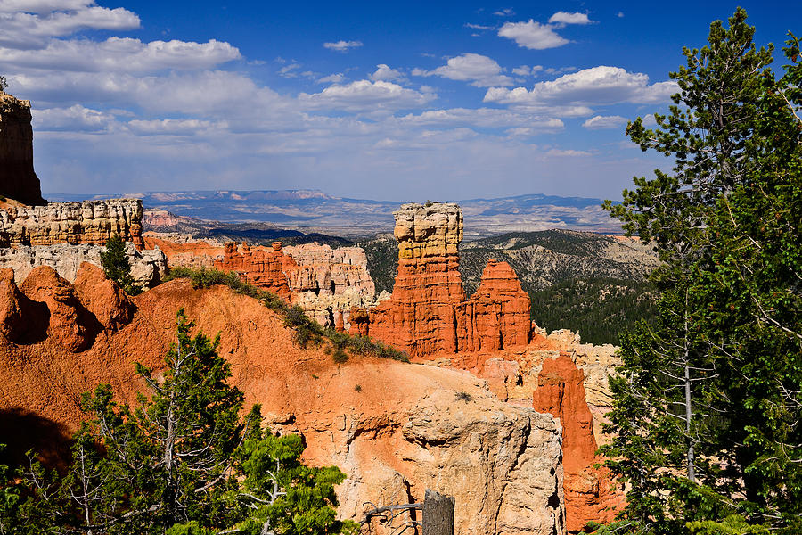 Bryce Canyon Photograph - Agua Canyon Bryce Canyon National Park by Greg Norrell