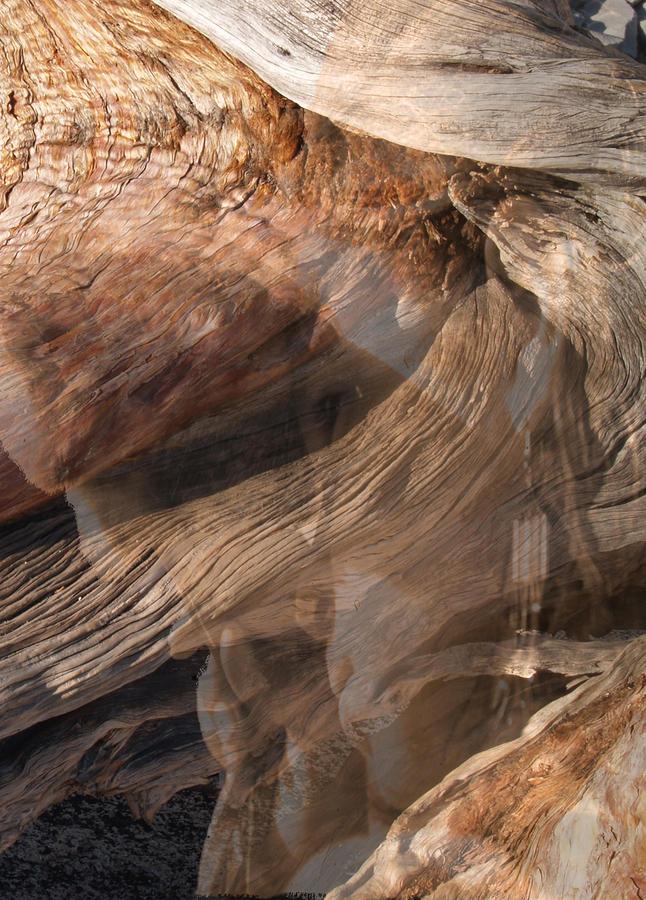 Ahwahnee Spirit Photograph