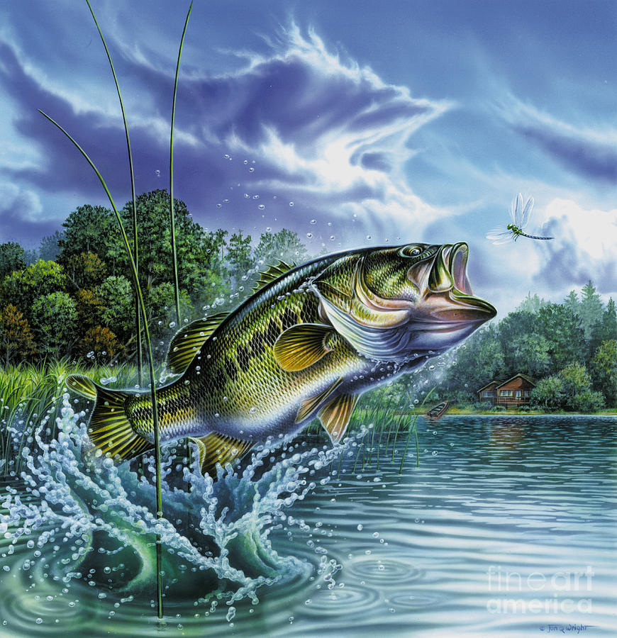 Airborne Bass Painting