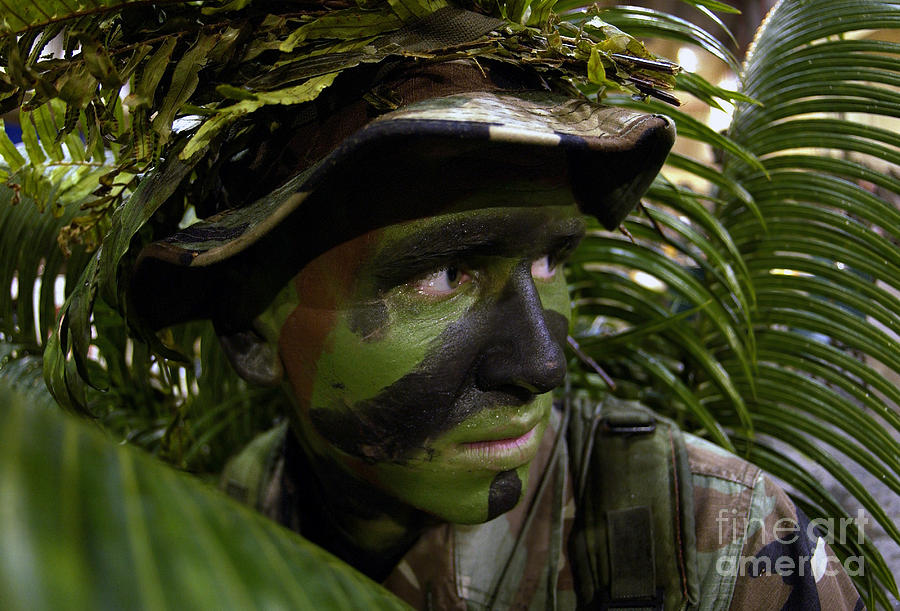 Airman Conceals Himself By Blending Photograph