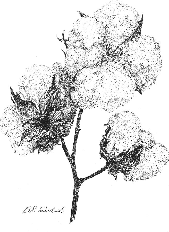 coloring book pages cotton plants - photo#27