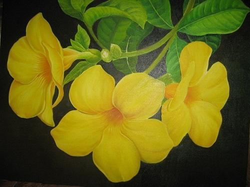 Exobiotion14 laporan morfologi tumbuhan rumus bunga dan anonim a2015 ccuart Image collections