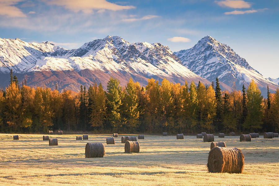 Horizontal Photograph - Alaska Farming by Alaska Photography