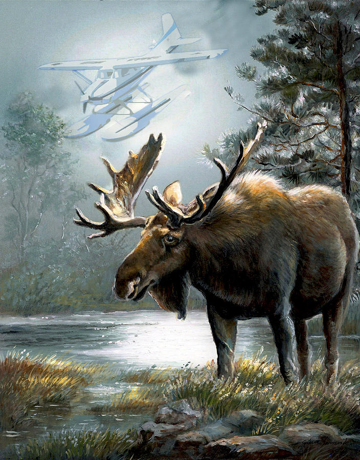 Alaska moose with floatplane by gina femrite for Art print for sale