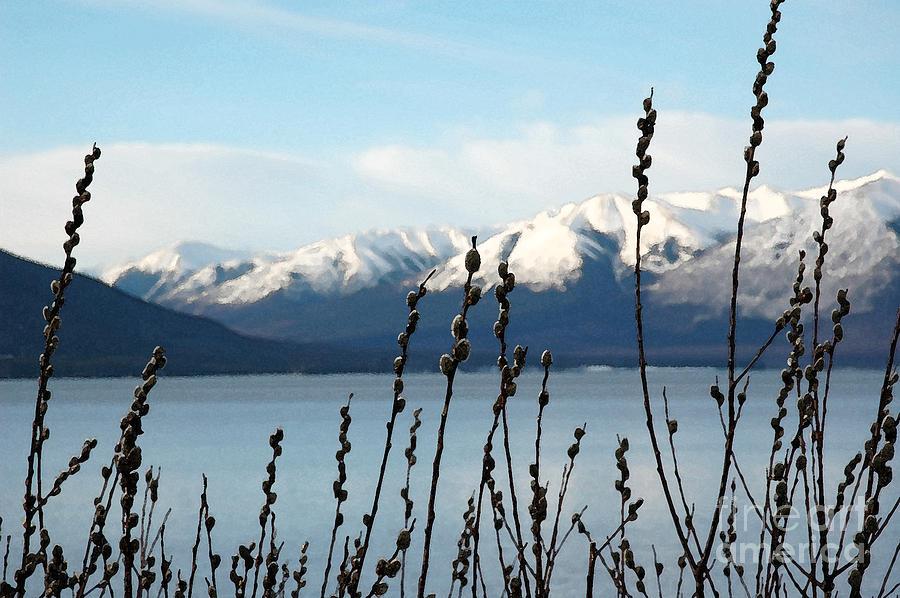 Alaska  Photograph