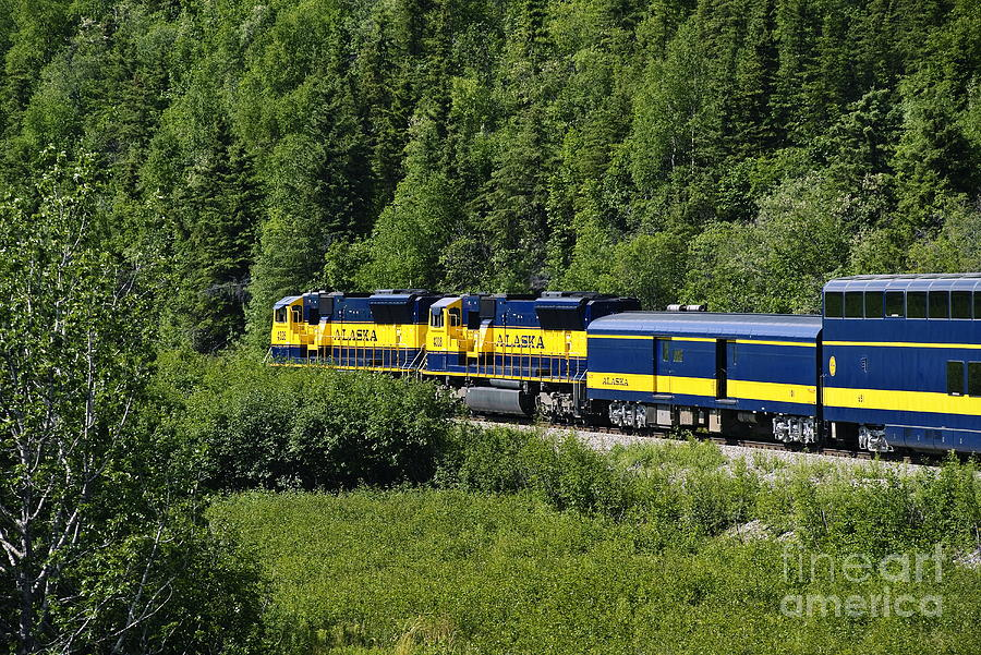 Alaskan Train Photograph  - Alaskan Train Fine Art Print