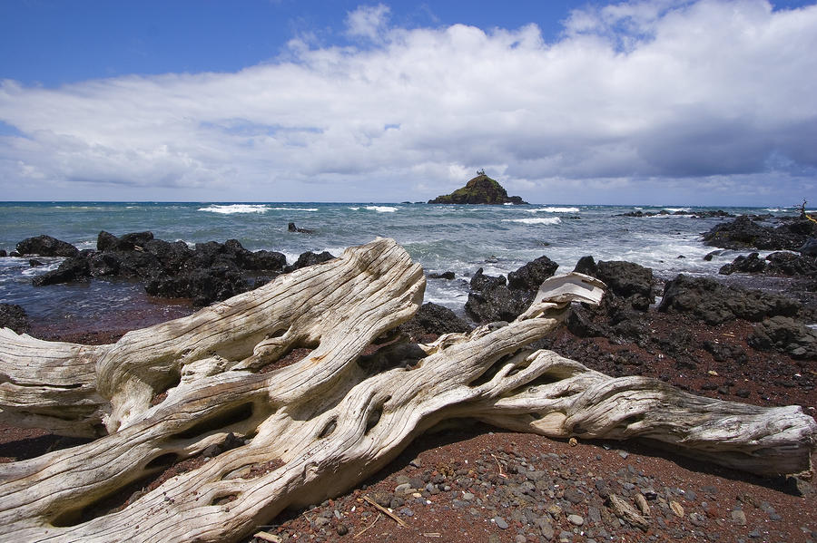 Alau Islet, Driftwood Photograph