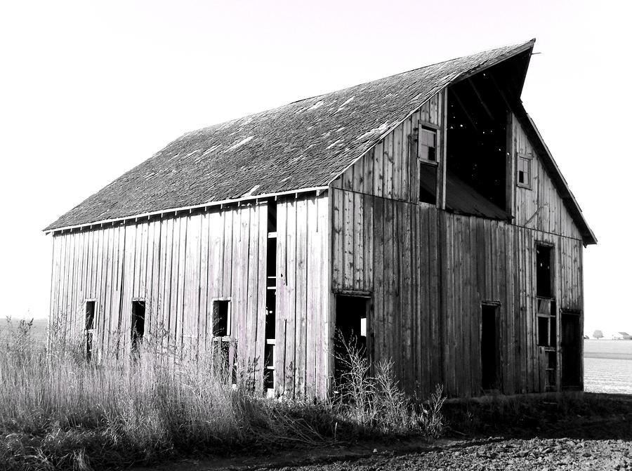 Albert City Barn 3 Photograph