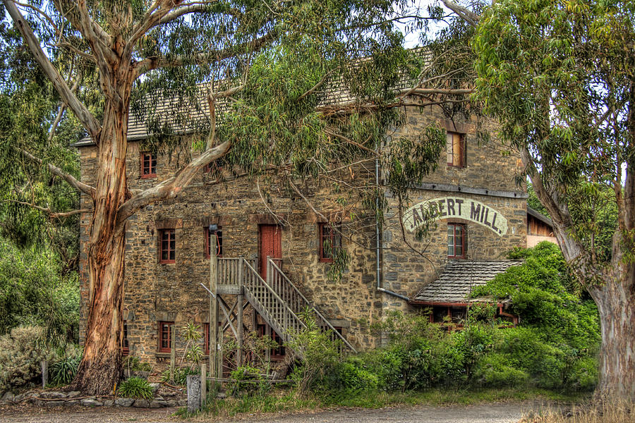Albert Mill Nairne Photograph  - Albert Mill Nairne Fine Art Print