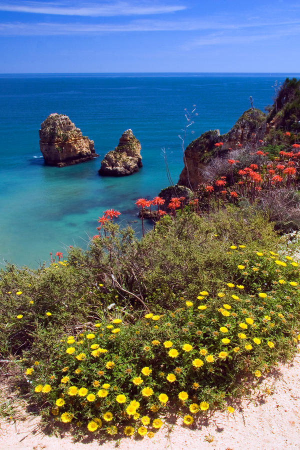Algarve Coast In Spring Photograph