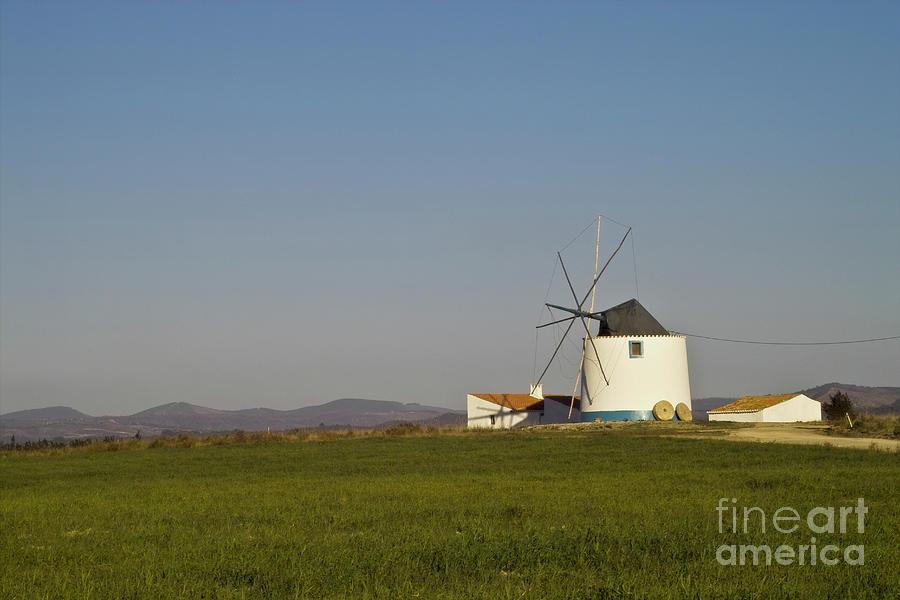 Algarve Windmill Photograph