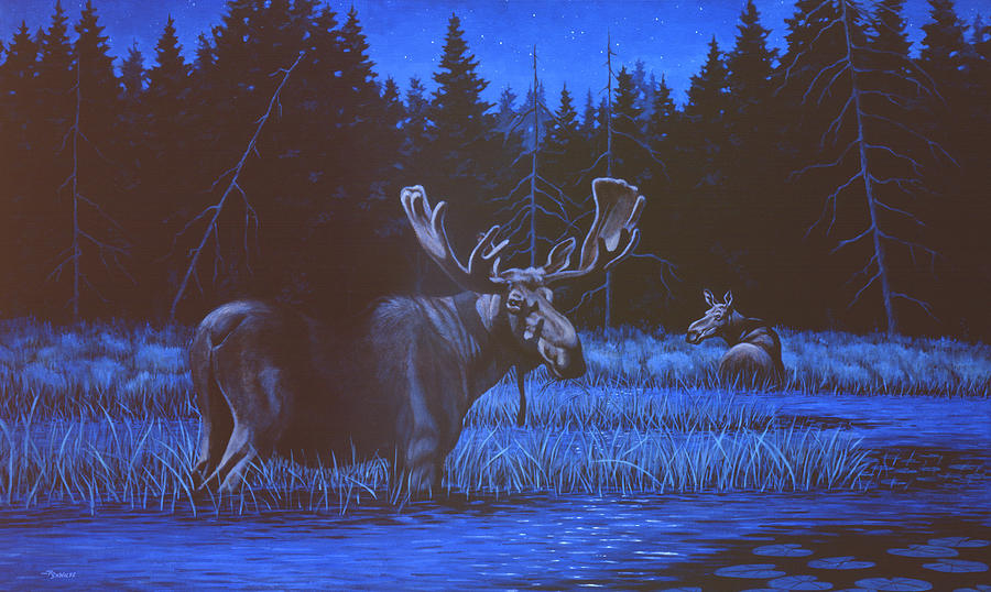Moose Painting - Algonquin Moonlight by Richard De Wolfe