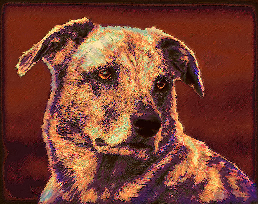 All American Mutt 2 Digital Art  - All American Mutt 2 Fine Art Print