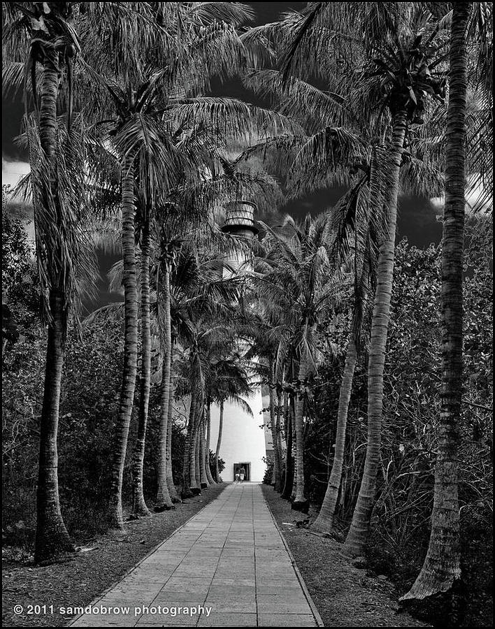 Allee At Key Biscayne Lighthouse Photograph