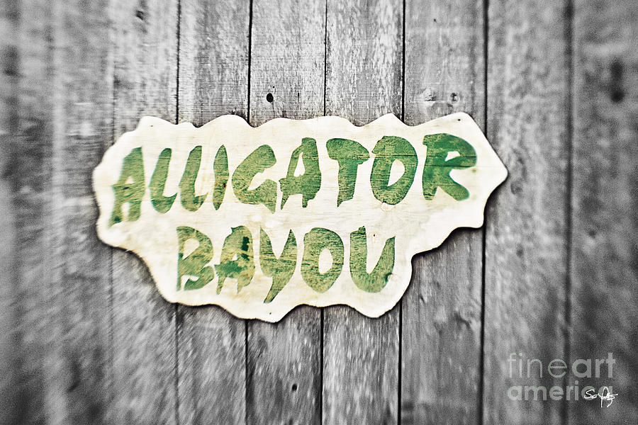 Alligator Bayou Photograph  - Alligator Bayou Fine Art Print