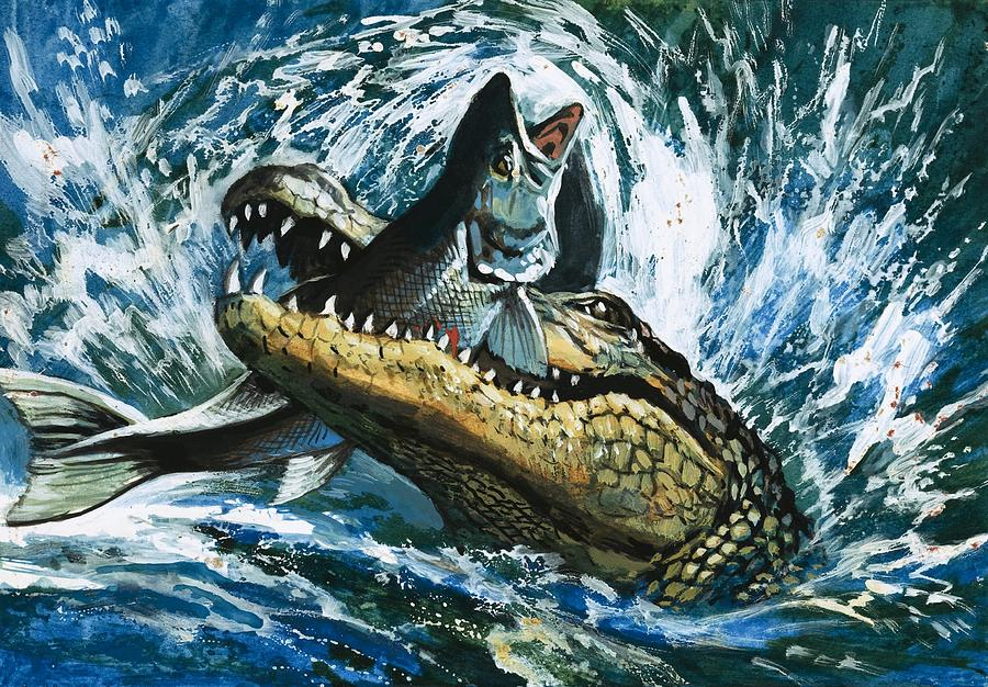 Fish; Eating; Fishing; Water; Splash; Alligator Painting - Alligator Eating Fish by English School