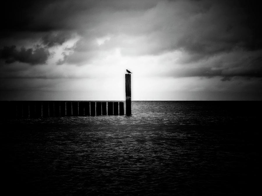 Alone At Sea - Black And White Nature Photograph Photograph  - Alone At Sea - Black And White Nature Photograph Fine Art Print