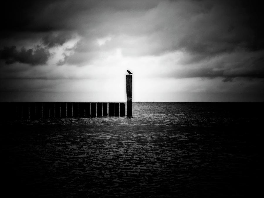 Alone At Sea - Black And White Nature Photograph Photograph