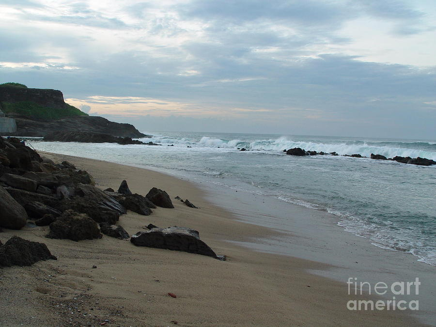 Along The Beach Puerto Rico Photograph