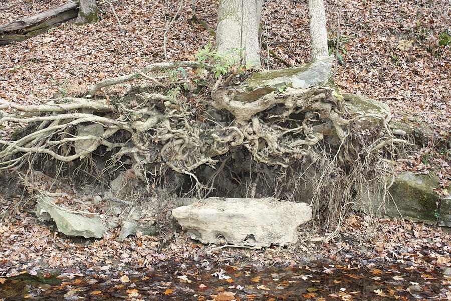 Rock Photograph - Altar To Nature by James Collier