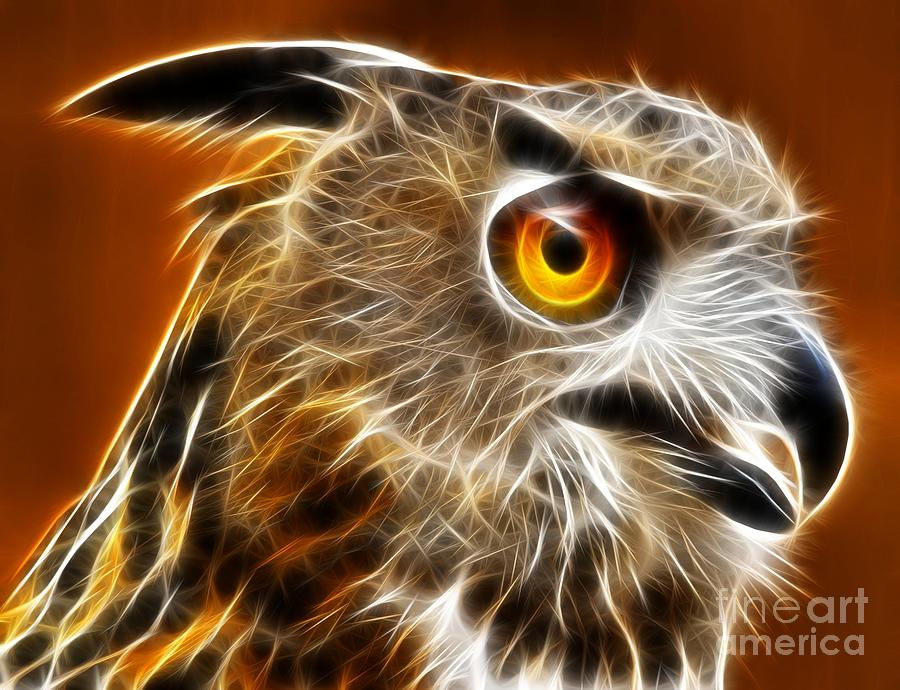 Amazing Owl Portrait Photograph  - Amazing Owl Portrait Fine Art Print