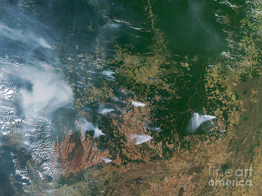 Amazon Basin Forest Fires, Satellite Photograph  - Amazon Basin Forest Fires, Satellite Fine Art Print