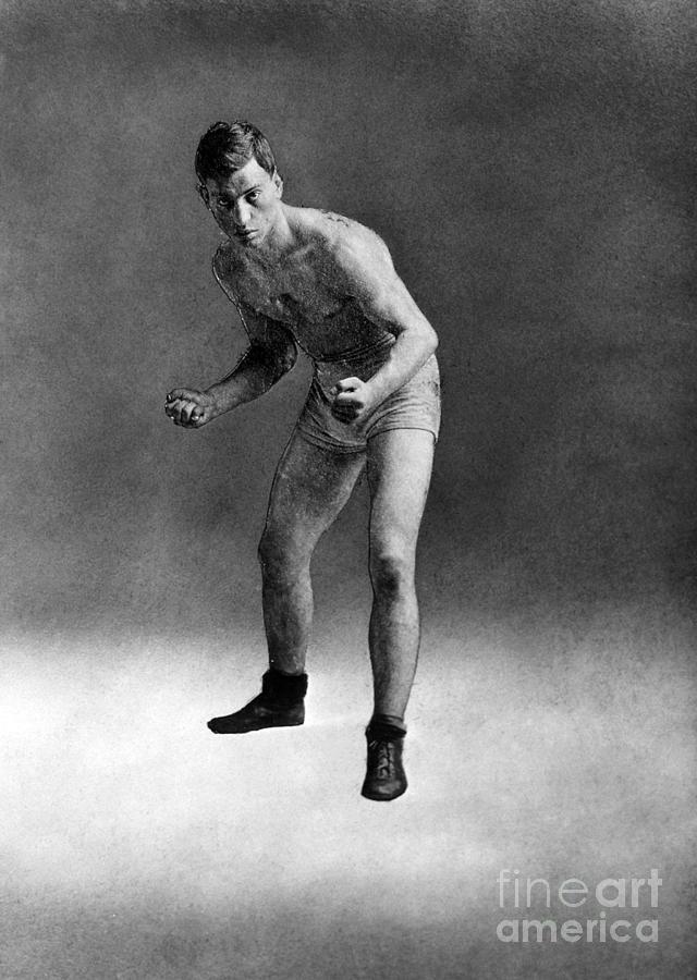 American Boxer, C1910 Photograph