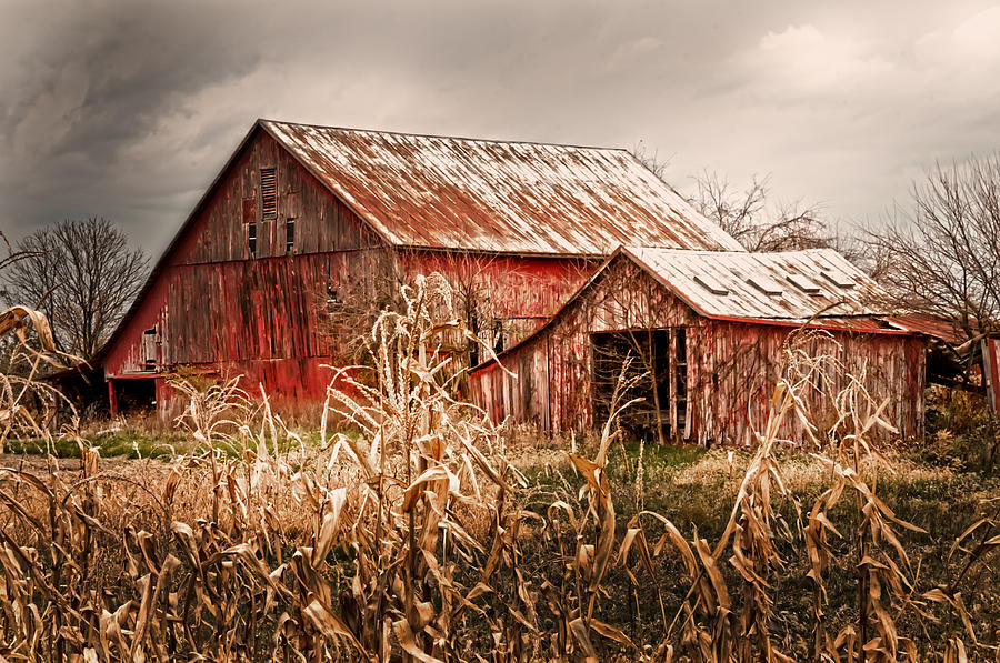 Americas Small Farm Photograph by Randall Branham